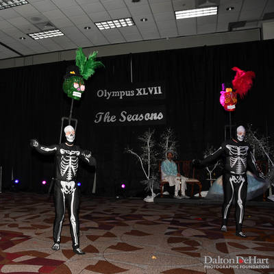 "Ball XLVII ""The Seasons"" at NRG Center <br><small>Feb. 11, 2017</small>"